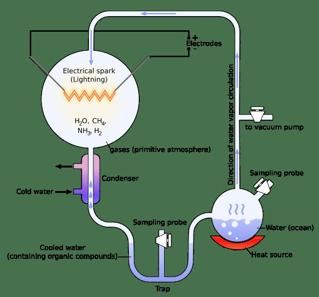 energia en el origen de la vida