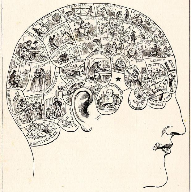 Historia Neurociencia Resumen Cronológico